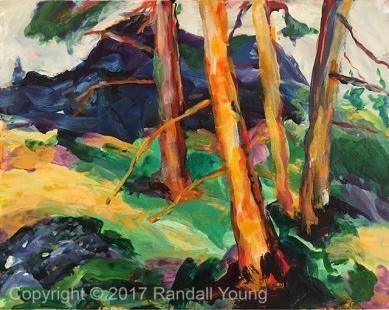 OK Falls Trail 10 x 8 Acrylic on board - Framed $155